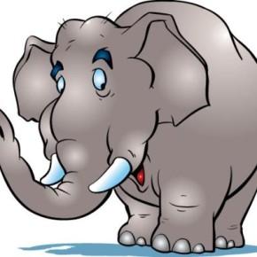 Вторая ступень Тренинга тренеров. Давайте есть слона по кусочкам!